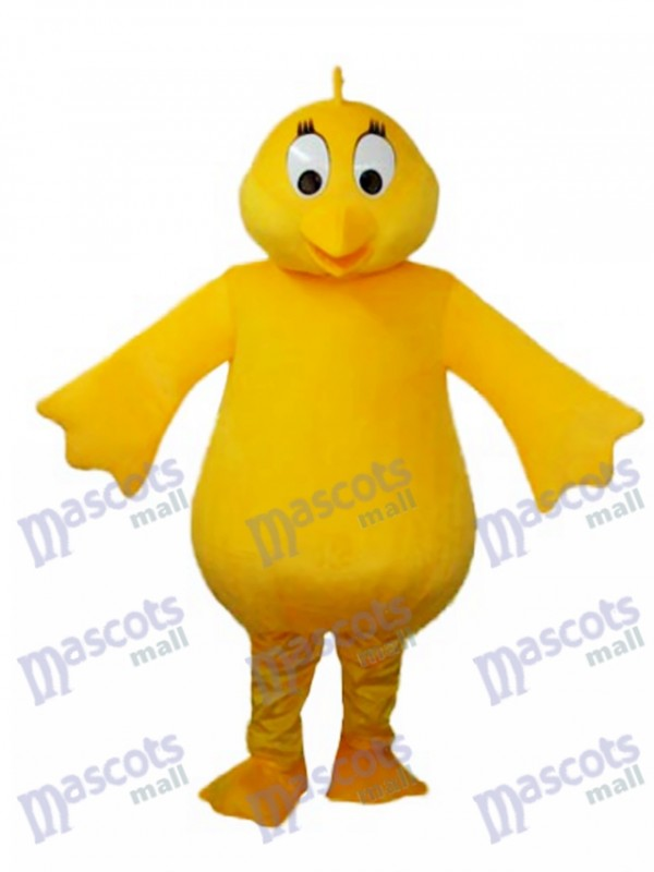 Big Belly Yellow Chicken Adult Mascot Costume