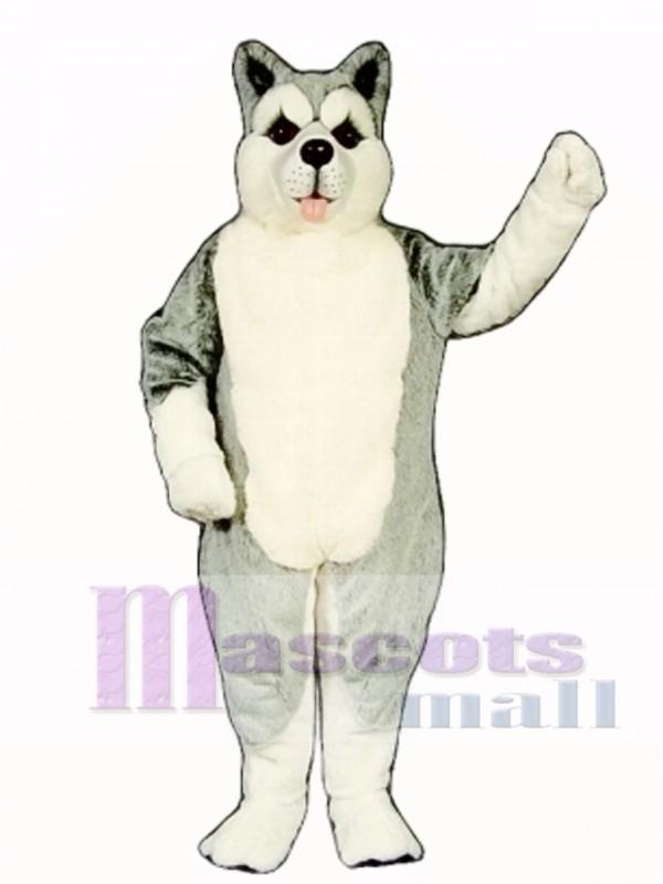 Cute Siberian Husky Dog Mascot Costume