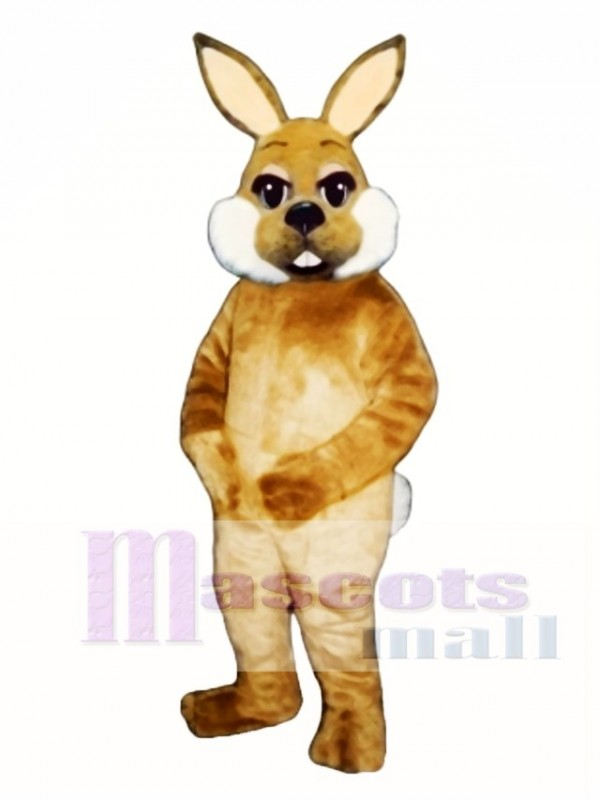 Cute Easter Brown Bunny Rabbit Mascot Costume