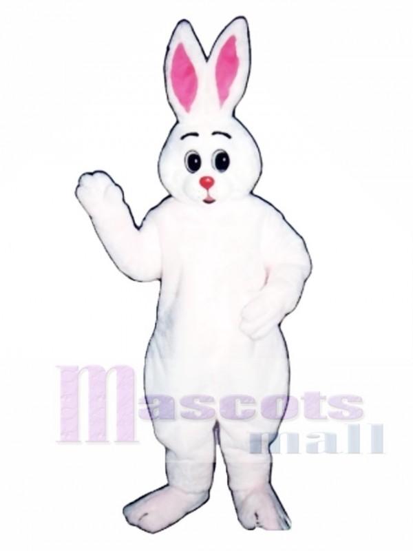 Cute Easter Bunny Rabbit Hugs Mascot Costume