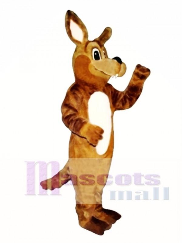 Cute Kody Koyote Coyote Wolf Mascot Costume