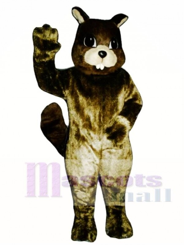 Squirrel Mascot Costume