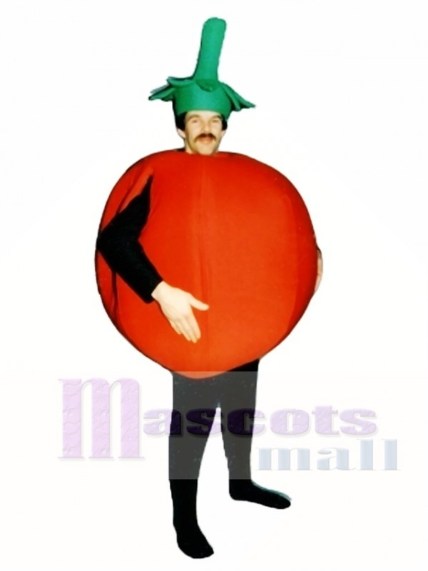 Süss Essiggurke Maskottchen Kostüm Gemüse