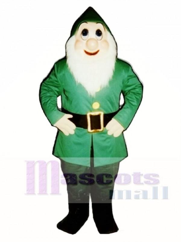 Christmas Elf Mascot Costume