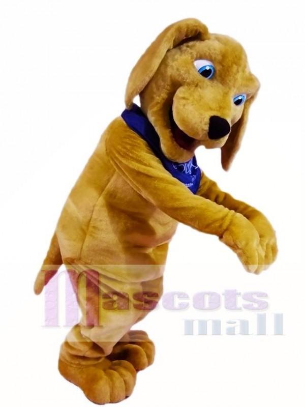 Brown Dog Mascot Costumes