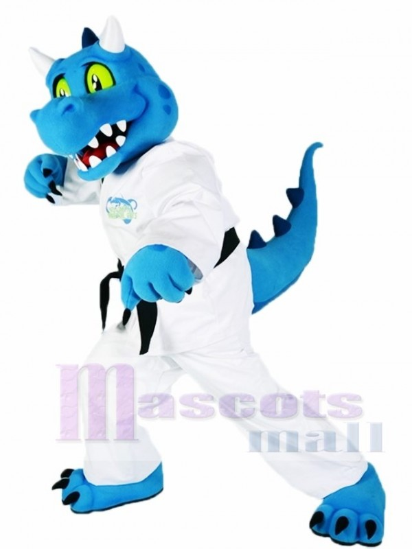 Blue Kung Fu Dragon Mascot Costumes