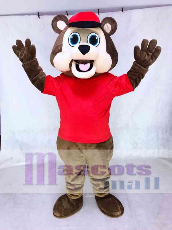 Minnesota Twin Cities T.C. Bear MLB Brown Bear with Hat Mascot Costume Animal