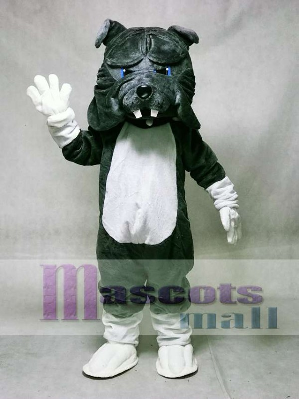 Gray Bulldog Dog with White Belly Mascot Costume Animal