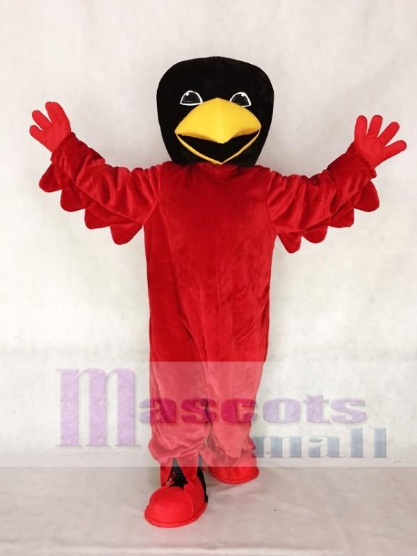 Red Bird Mascot Costume