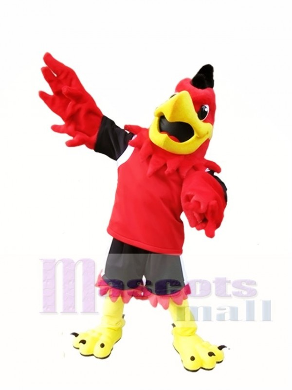 Red Hawk Mascot Costume Mo the Falcon Mascot Costu