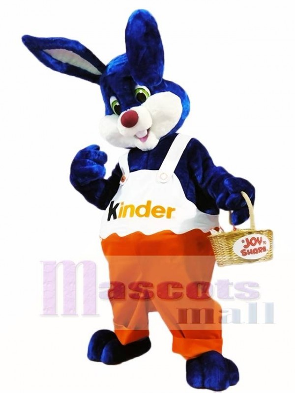 Rabbit Bunny Kinder Mascot Costumes Animal