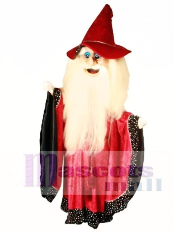 Merlin Wizard Mascot Costume