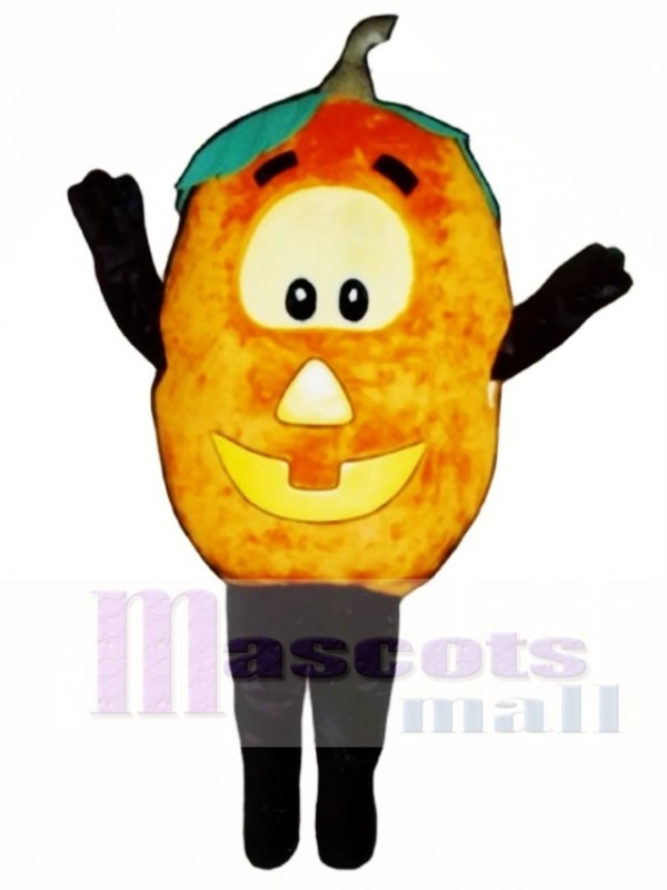 Jack O Lantern Mascot Costume