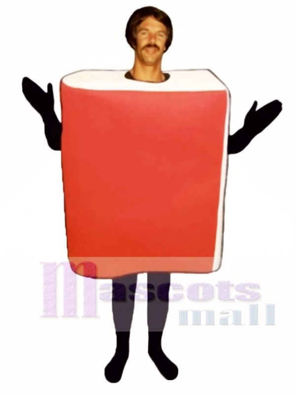 Book Mascot Costume