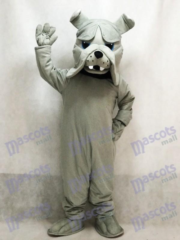 Gray Bully Bulldog Dog Mascot Costume Animal