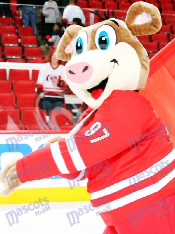 Stormy Carolina Hurricanes Ice Hog Mascot Costume Animal